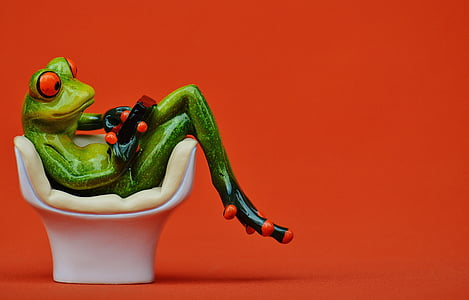 green frog sitting on egg chair