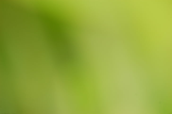 green, blur, background, blurred, color, colour