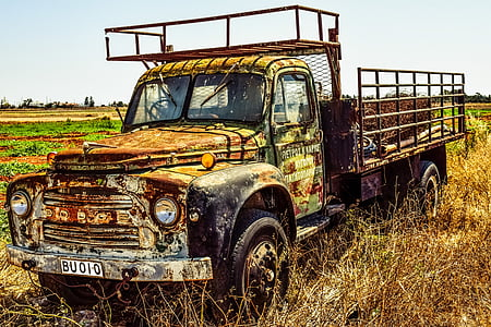 rusted green single cab truck on open field