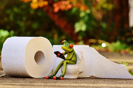 close up photography of frog sitting on toilet figurine