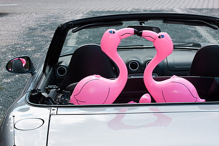 two pink inflatable flamingos on grey coupe