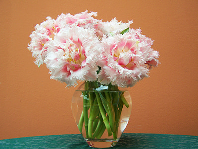 pink flowers in vase filled with water