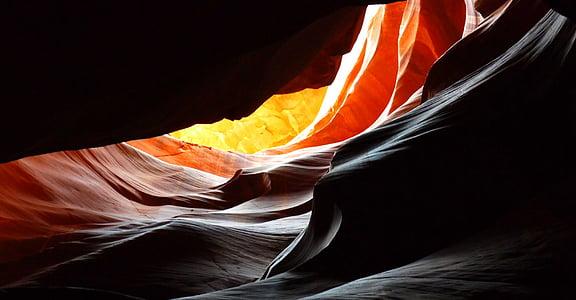 Grand Canyon Antelope