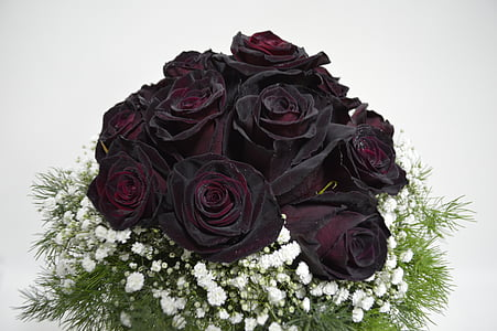 bouquet of black-and-red rose with white flowers