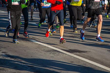 photography of marathon people running on roadway