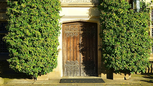 brown side-by-side door beside garden