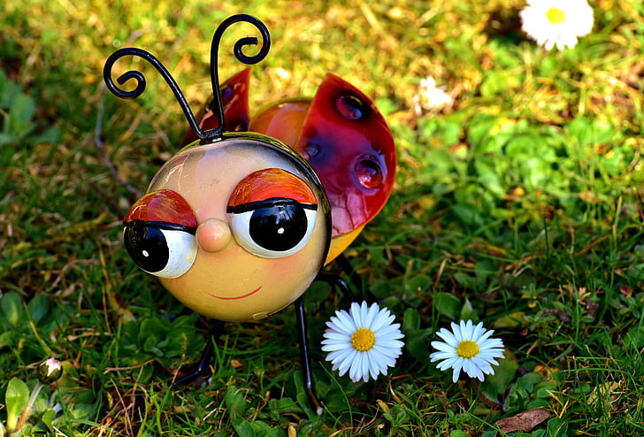 ladybug decor beside white daisy on green grass