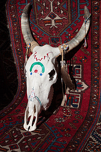 animal skull on area rug