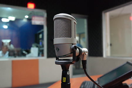 gray condenser microphone on microphone stand
