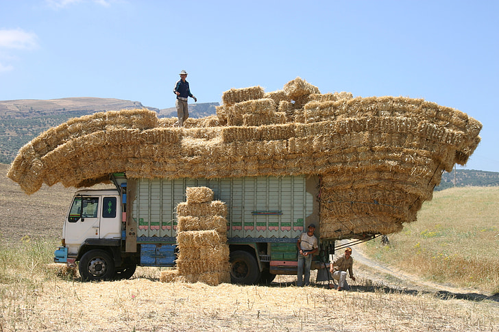 man standing top of truck with hays