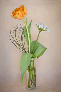 orange and white flowers in clear vase