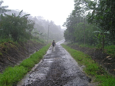 person walking between trees during rain