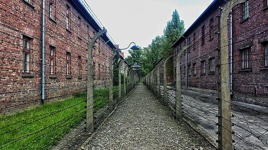pathway between building