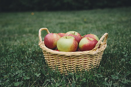 apple fruits in basket on lawn