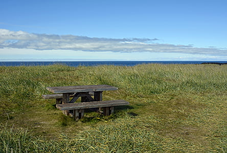 picnic bench surrounded by grassy field