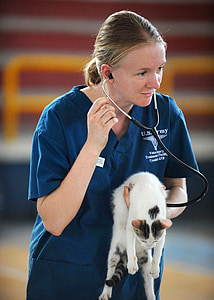 woman wearing blue US Army scrub shirt holding white cat and wearing stethoscope