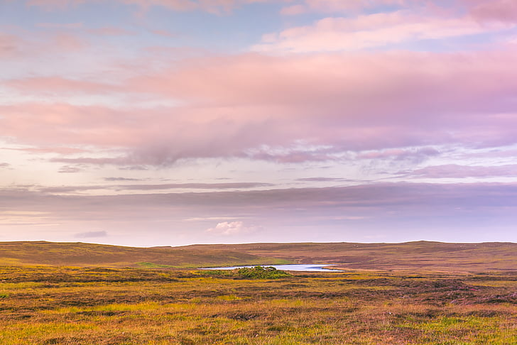 landscape photography of green plains