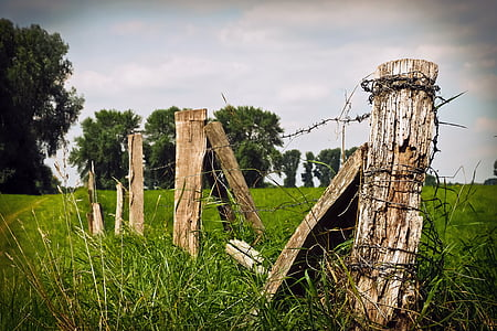 brown wooden posts with barbed wires on grassland