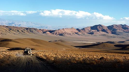 gray vehicle in desert