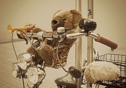 brown bear plush toy in bicycle basket