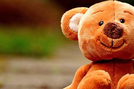 closeup photography of brown bear plush toy