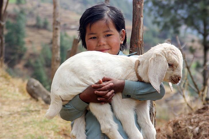 boy carrying white kid goat
