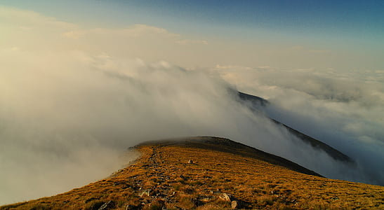 mountain coated with fogs