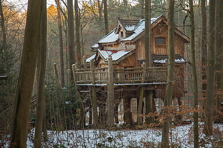 landscape photograph of tree house in forest