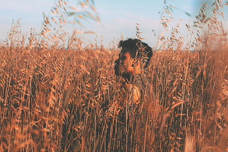 man walking in green wheat field