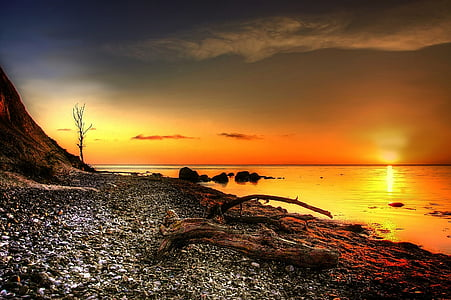 golden hour photo of seashore