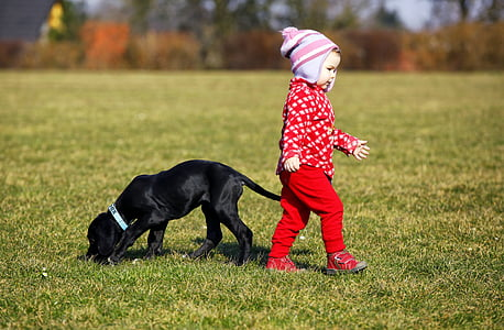 puppy and toddler on green grass field