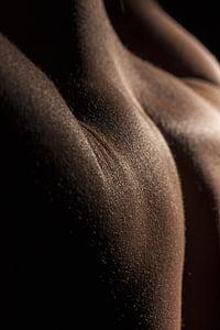 back, model, naked, skin, women's, sexy