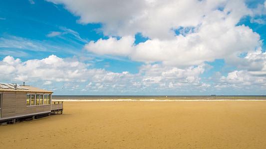 white wooden shelter near seashore