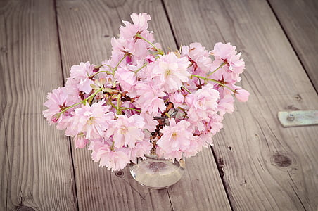 pink tree blossom flowers in clear glass vase on brown wooden surface