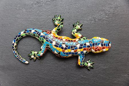 multicolored lizard