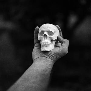 person holding human skull miniature