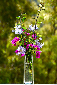 shallow focus photo of pink and purple flowers in glass vase