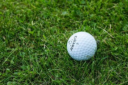 white golf ball on glass