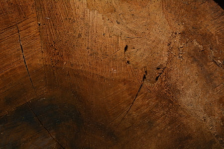wood, structure, wood fibres, wood grain, close, texture