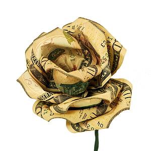 U.S. dollar rose flower