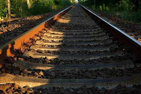 person taking photo of train tracks