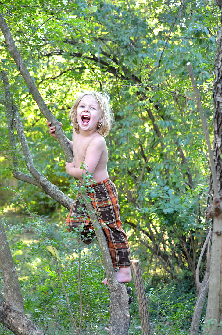 topless boy climbing small tree inside forest during daytime