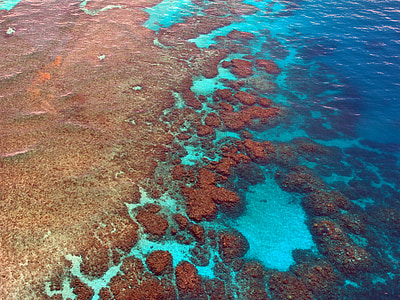 body of water scenery