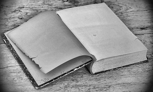 grayscale photo of book