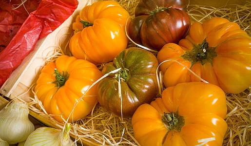 six assorted-color pumpkins