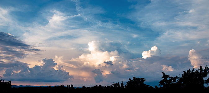 silhouette of trees under blue and cloudy sky at sunset