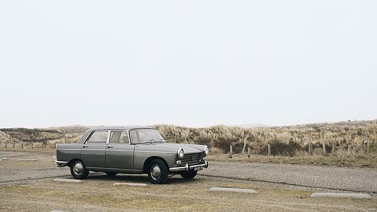 classic gray sedan park ahead near brown grass at daytime