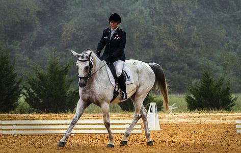 person riding white horse