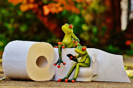 two tree frog figurines beside two white toilet papers