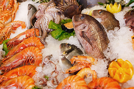 food photography of shrimps and fishes